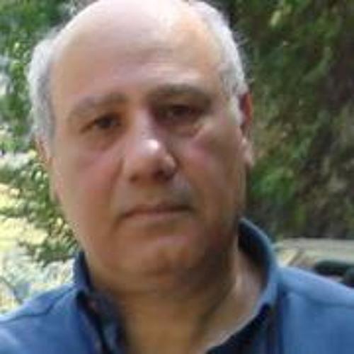 Abbas Kamyab's avatar