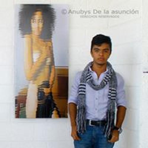 Anubys De la Asuncion's avatar