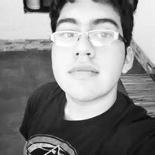 Felipe Borjas Vergara's avatar