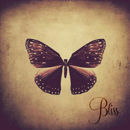 Bliss's avatar