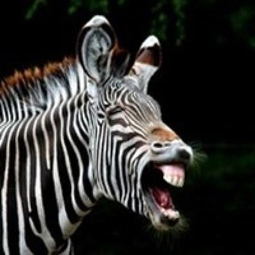 The Reckless Zebra's avatar
