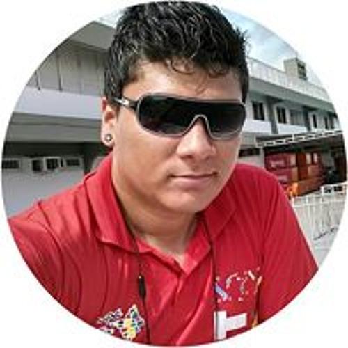 Luiz Paulo Alves's avatar