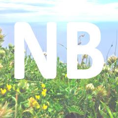 Niki B Music