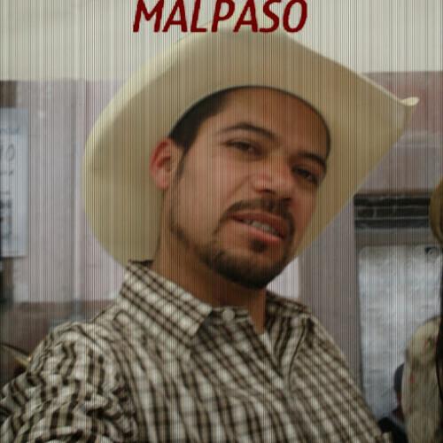 Lupano Alonso's avatar
