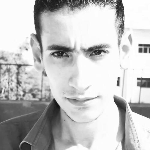 Karim M. Fouad 1's avatar
