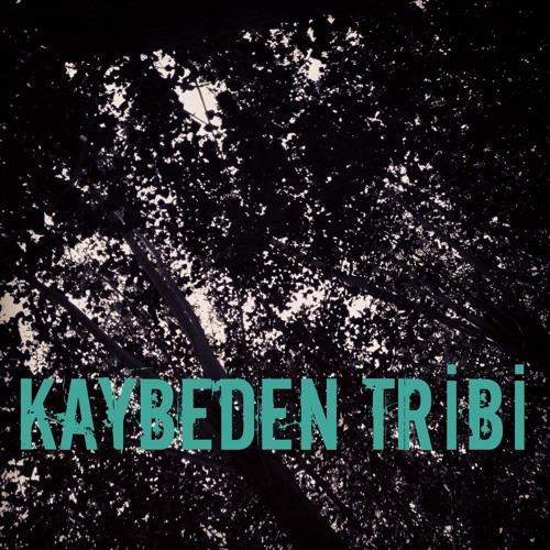 Kaybeden Tribi's avatar