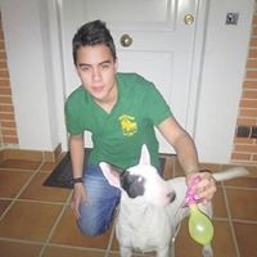 Jordi Hincapie Perez's avatar