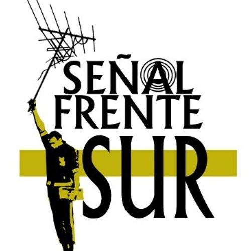 Señal Frente Sur!'s avatar