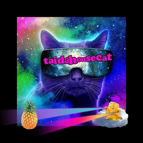 TaiDaHouseCat's avatar
