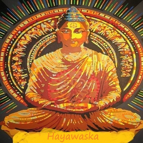 |HayaWaska|'s avatar
