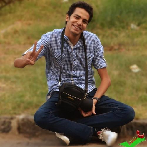 karim elsakka's avatar
