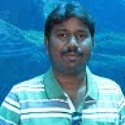 rams 1's avatar
