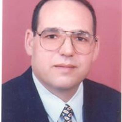 Mahmoud Hegazy 13's avatar
