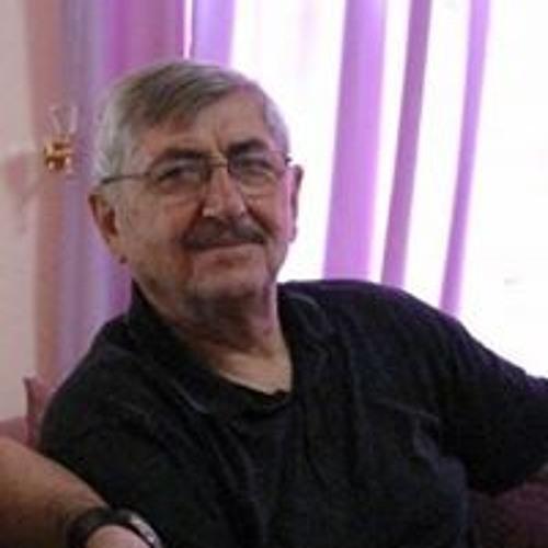 Nawzad Khoshnaw's avatar