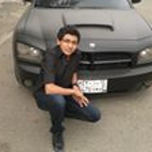 Yousef Hossam 4's avatar