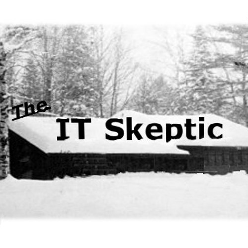 The IT Skeptic's avatar