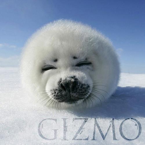 Gizmo's avatar