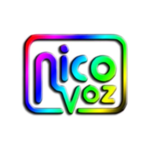 Nico Voz's avatar