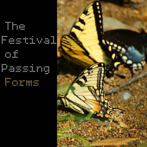 Festival of Passing Forms's avatar
