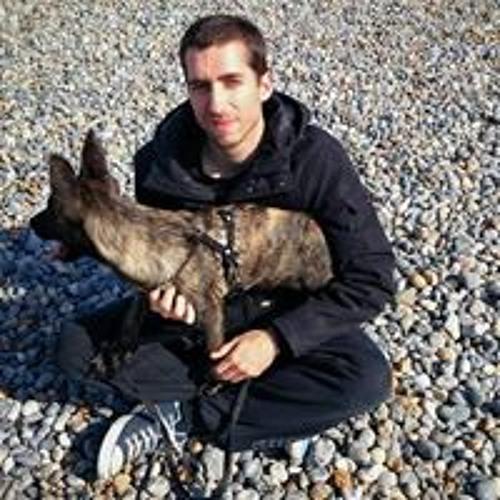 Fabien Breant 1's avatar