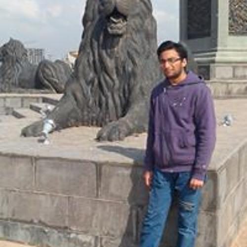 Mustafa Hassnain's avatar