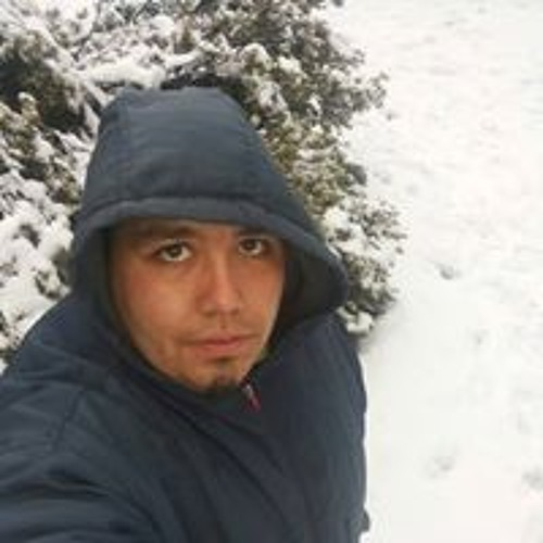 Pedro Alexis Matthies's avatar
