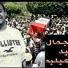 Kareem Mohamed 178