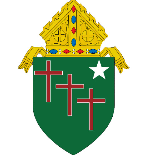 Diocese of Gallup's avatar