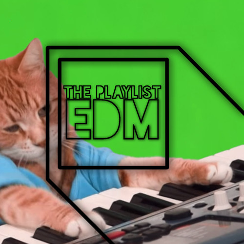 ThePlaylistEDM's avatar