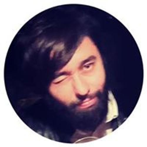 Lucas Fujarra Beraldo's avatar