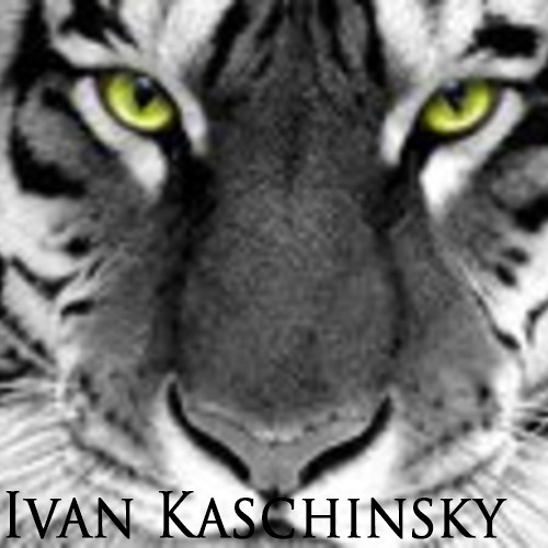 Ivan Kaschinsky's avatar