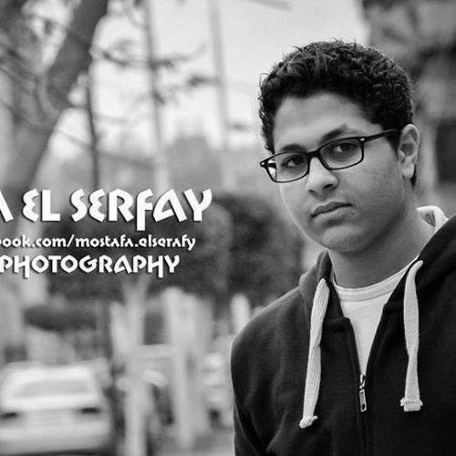 Mostafa Elserafy's avatar