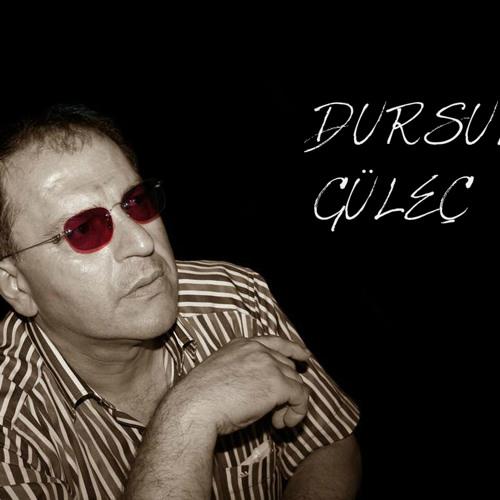 dursungulec's avatar
