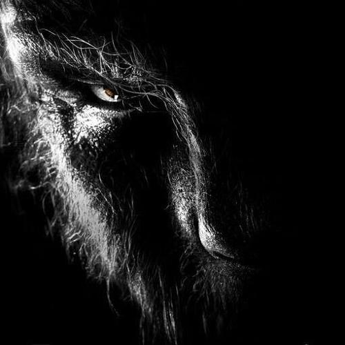 Darkkenmind's avatar