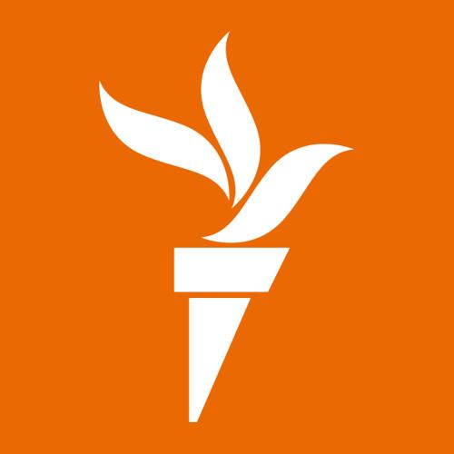 Ozodlik Radiosi's avatar