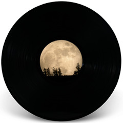 Lunar Sightseeing
