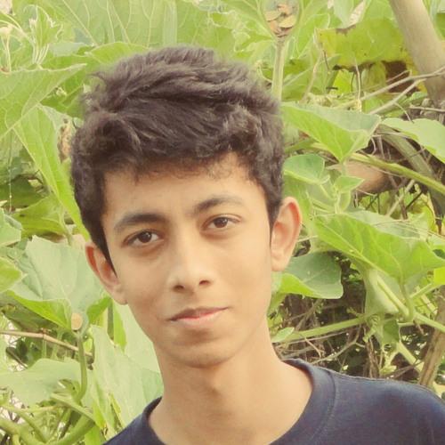 Rafid Ahsan Anan's avatar