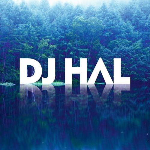 DJ HΛL's avatar