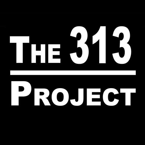Paranoyer-313's avatar