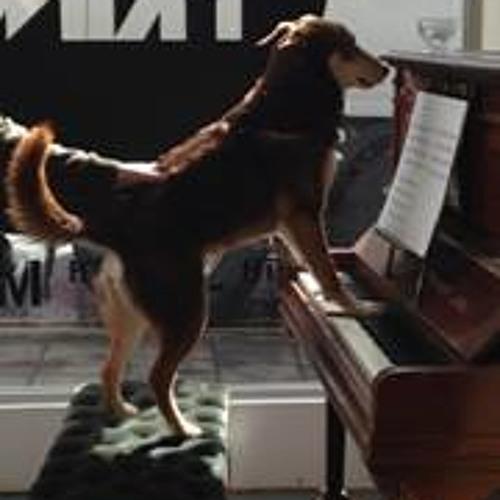 Glasgow Piano City's avatar