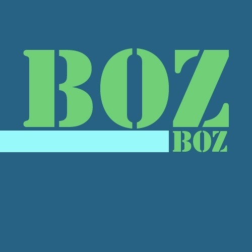 Boz Boz Recordings's avatar