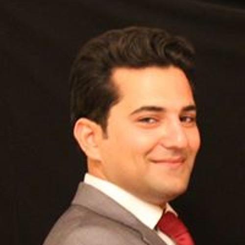 Mohammadreza Khodagholi's avatar
