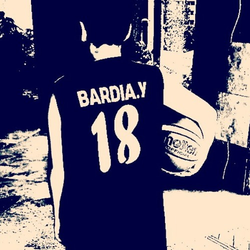 bardia_y's avatar