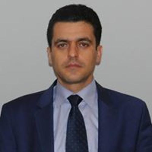Amir Deldari's avatar