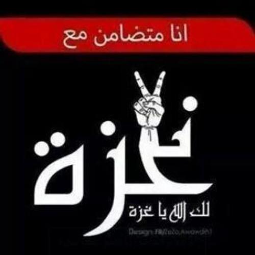 Ahmed Sayed's avatar
