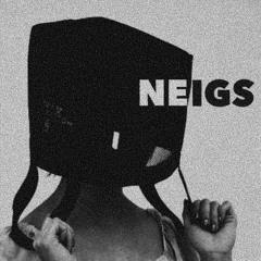 NEIGS