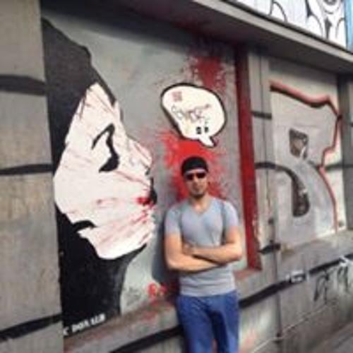 Tauben Stresser's avatar