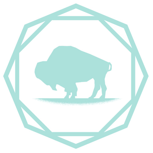 TomTomFest's avatar