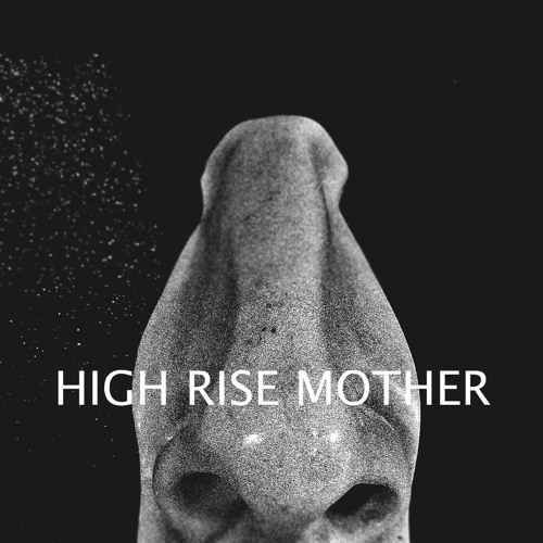High Rise Mother's avatar