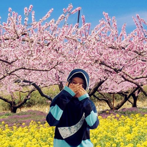 Dian T. Kusuma D.'s avatar